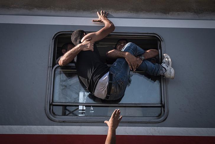 Отчаявшиеся беженцы пытаются влезть в поезд до Загреба на станции Товарник на сербской границе. Когд