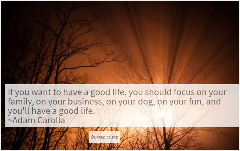 If you want to have a good life, you should focus on your family, on your business, on your dog, on your fun, and you'll have a good life. ~Adam Carolla