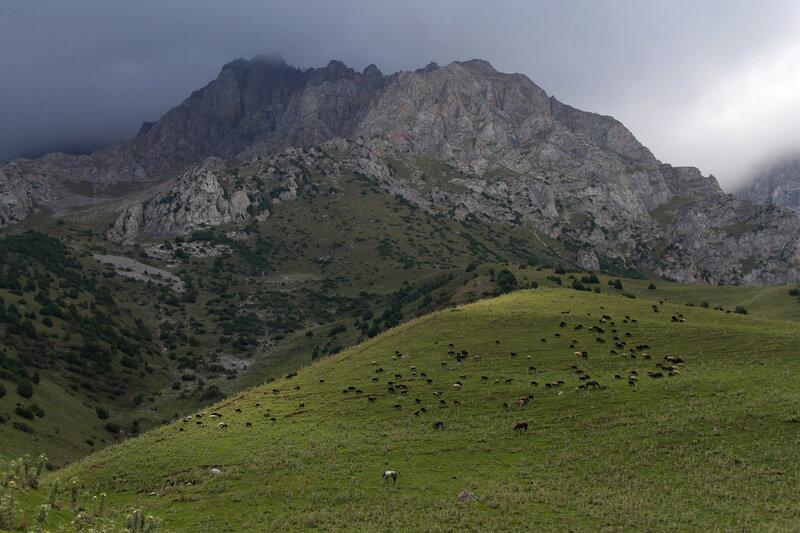 Поход. Киргизия, Ош, август 2016.