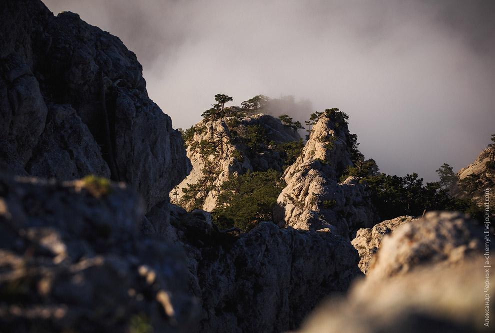 Гора Ай-Петри и море облаков. Просто посидев немного на «берегу облачного моря», понимаешь за ч
