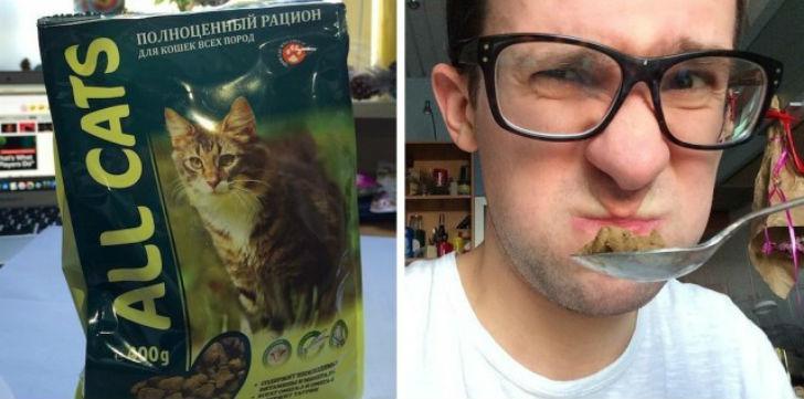 ALL CATS сбалансированная диета Первое впечатление — никогда бы не подумал, что кошачью еду так слож