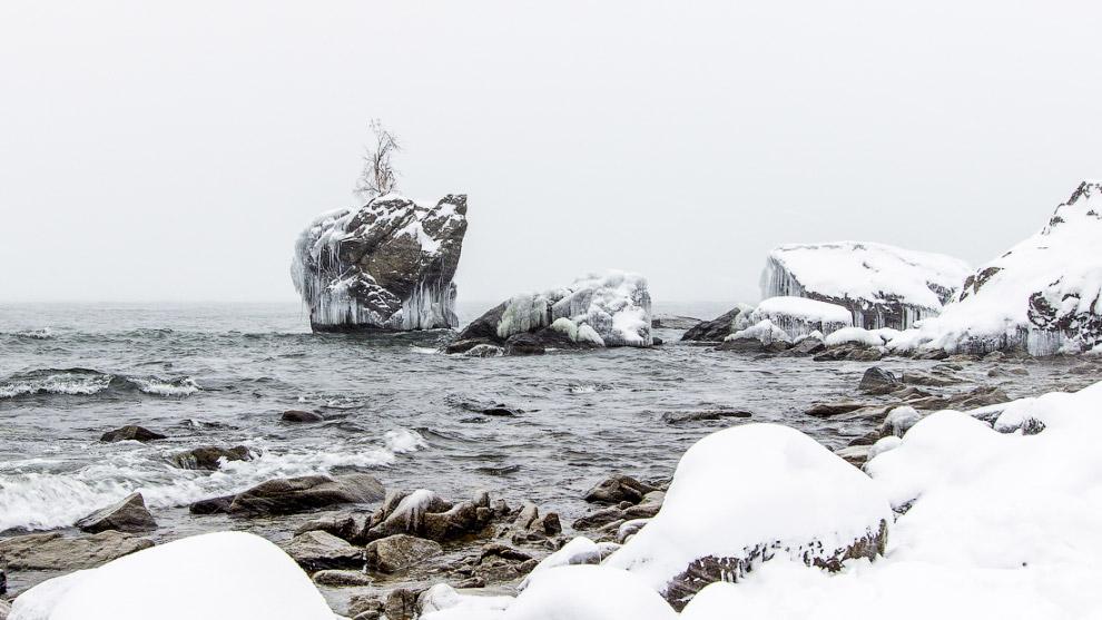 3. Нижние ветки уже заледенели, сама черепаха покрывается льдом и сосульками, формируется её зи
