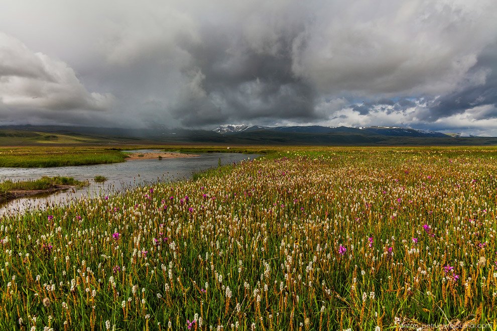 4. Над Табын-Богдо-Ола без остановки клубились облака. За всю поездку гора полностью открывалас