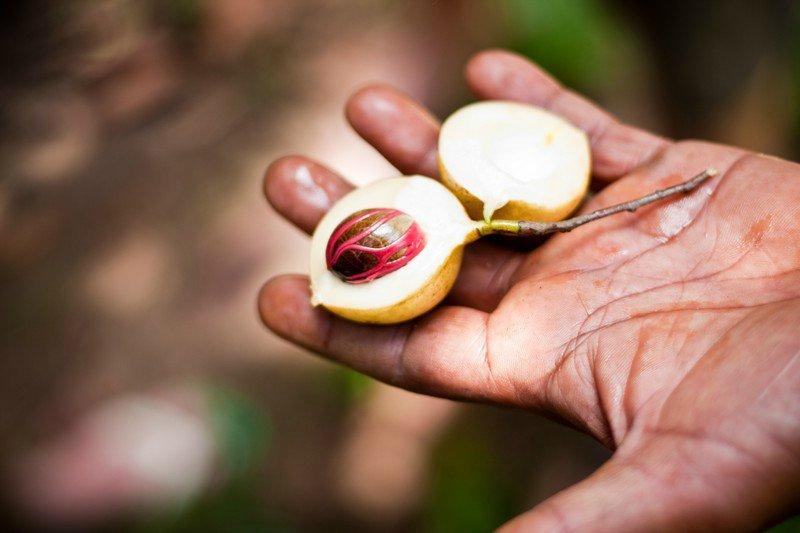 Занзибар известен экспортом резных дверей, мальчик вырезает фигуры на цельном куске дерева