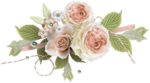 Peach Love Elements (4).png