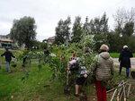 Акция Наш лес. Посади свое дерево призвана обратить внимание общественности на существующую проблему, а также восполнить утраченный зеленый фонд. В Раменском районе акция проходила в каждом сельском поселении