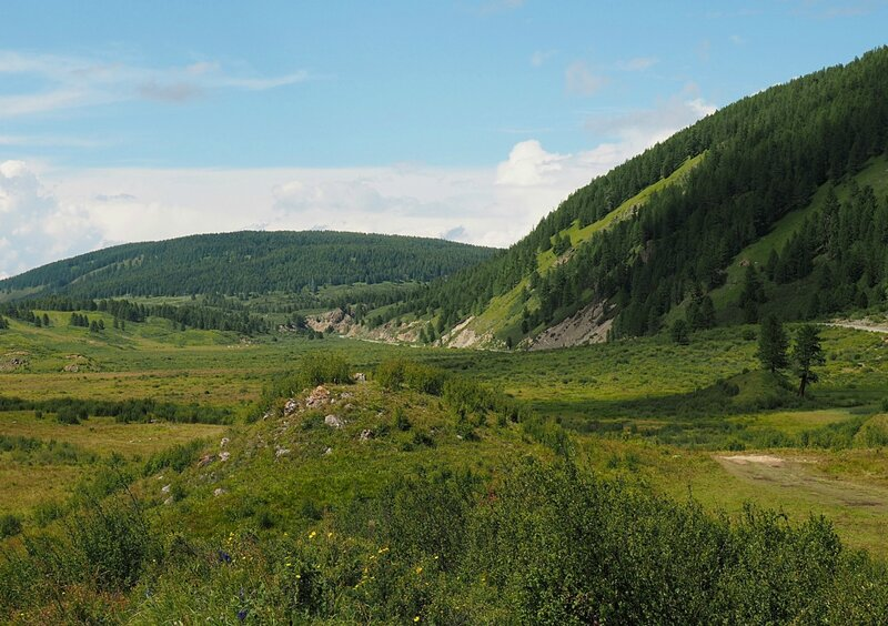 Горный Алтай - возле озера Чейбеккёль (Mountain Altai - near Lake Cheybekkol)