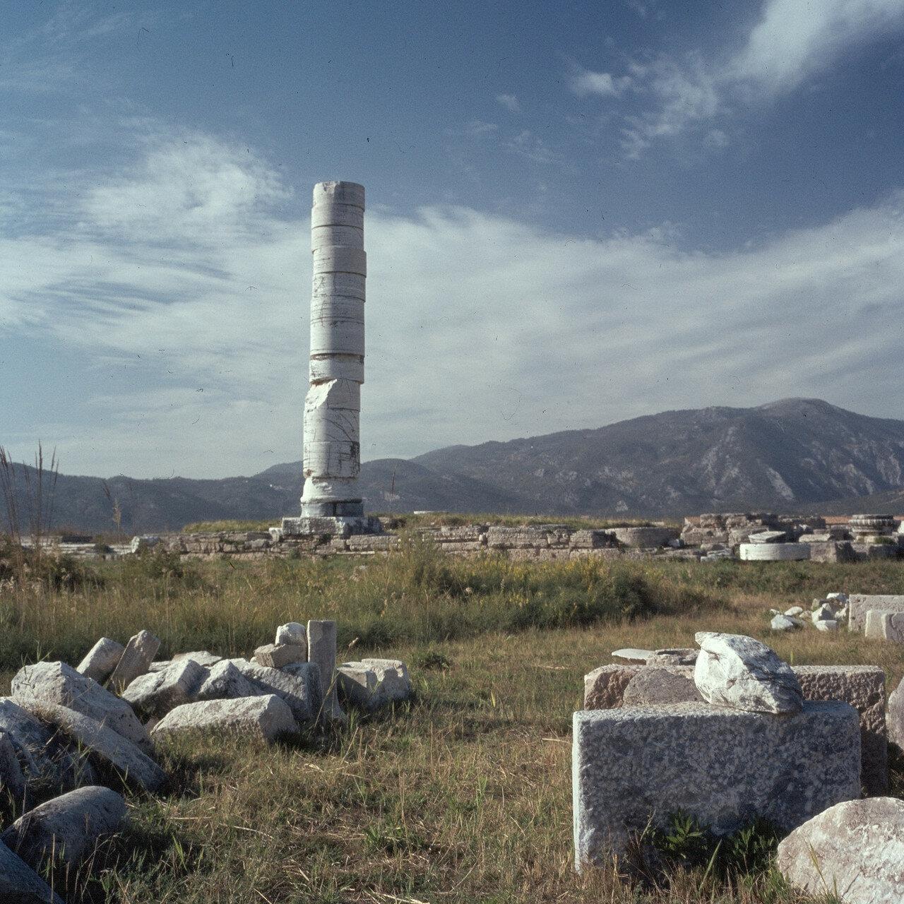 Самос. Герайон. Вид на колонну. 1964