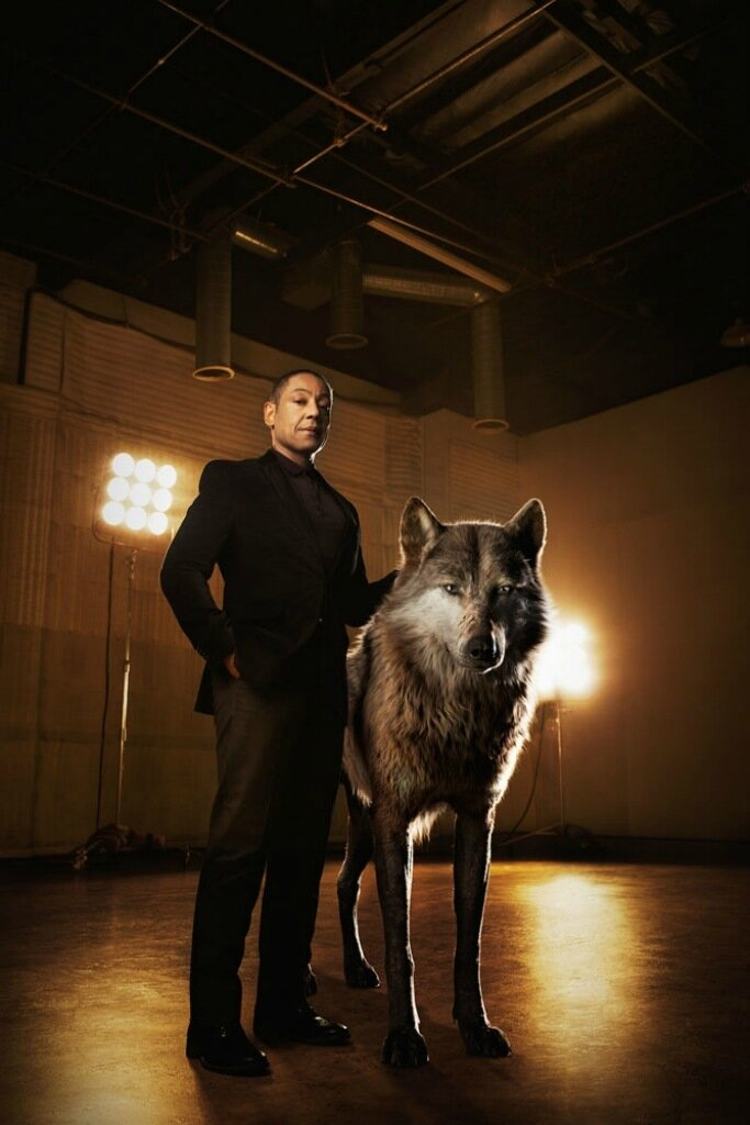 "THE JUNGLE BOOK - Akela is the strong and hardened alpha-male wolf who shoulders the responsibility of his pack. He welcomes Mowgli to the family, but worries he may one day compromise their safety. ""Akela is a fierce patriarch of the wolf pack,"" says Giancarlo Esposito, who voices the character. ""He believes the strength of the pack lies in what each and every wolf offers. He's a great leader, a wise teacher.""..Photo by: Sarah Dunn. ©2016 Disney Enterprises, Inc. All Rights Reserved."