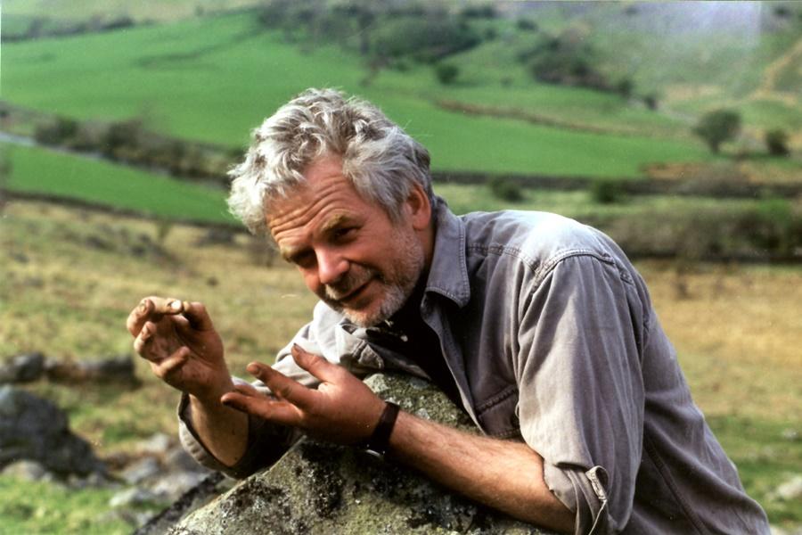 Защитник окружающей среды скульптор Энди Голдсуорти (Andy Goldsworthy)