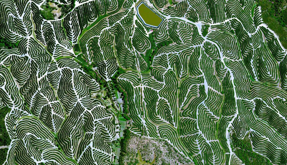 11. Горная дорога в Италии. (Фото Benjamin Grant | Digital Globe):