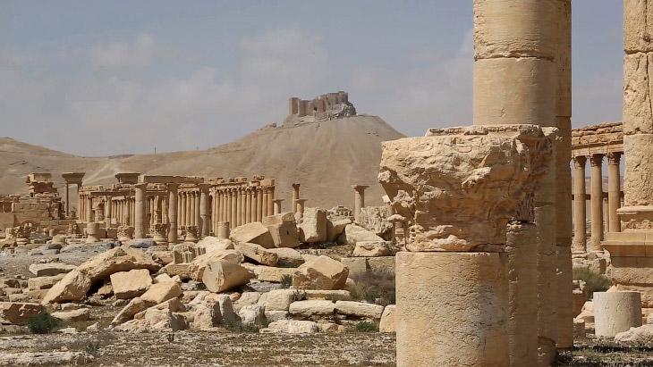 Освобождение древней Пальмиры (21 фото)