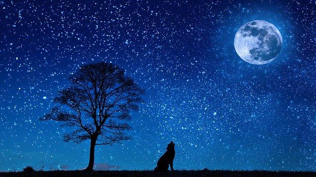 Ученые считают, что Луна— это отколовшийся кусок Земли