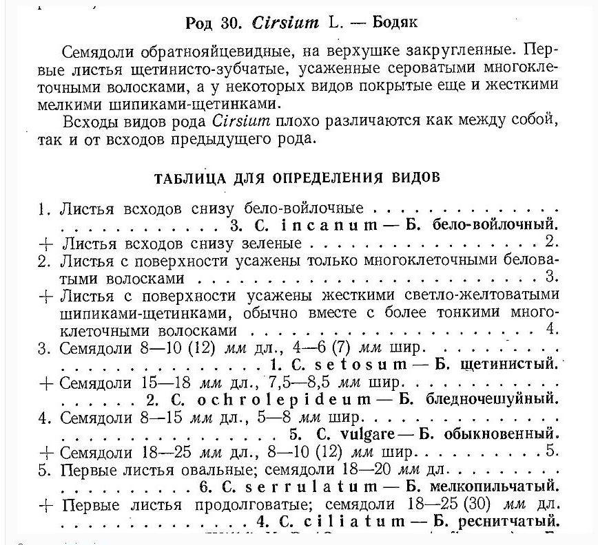 https://img-fotki.yandex.ru/get/122076/36055076.7d/0_ddf65_ec19cddb_orig.jpg