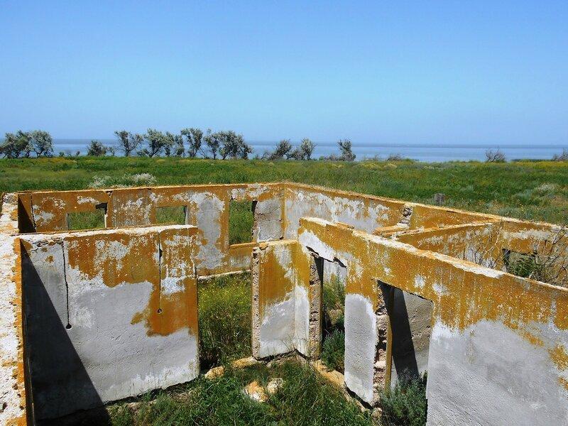 Стены, остатки бывшего... DSCN6397.JPG
