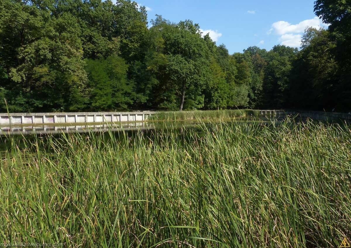Парк «Нивки»-2 (Частина 1): Східна частина