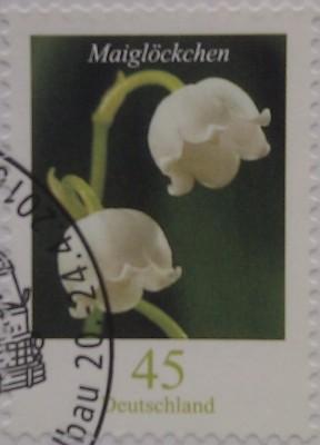 цветочек 45