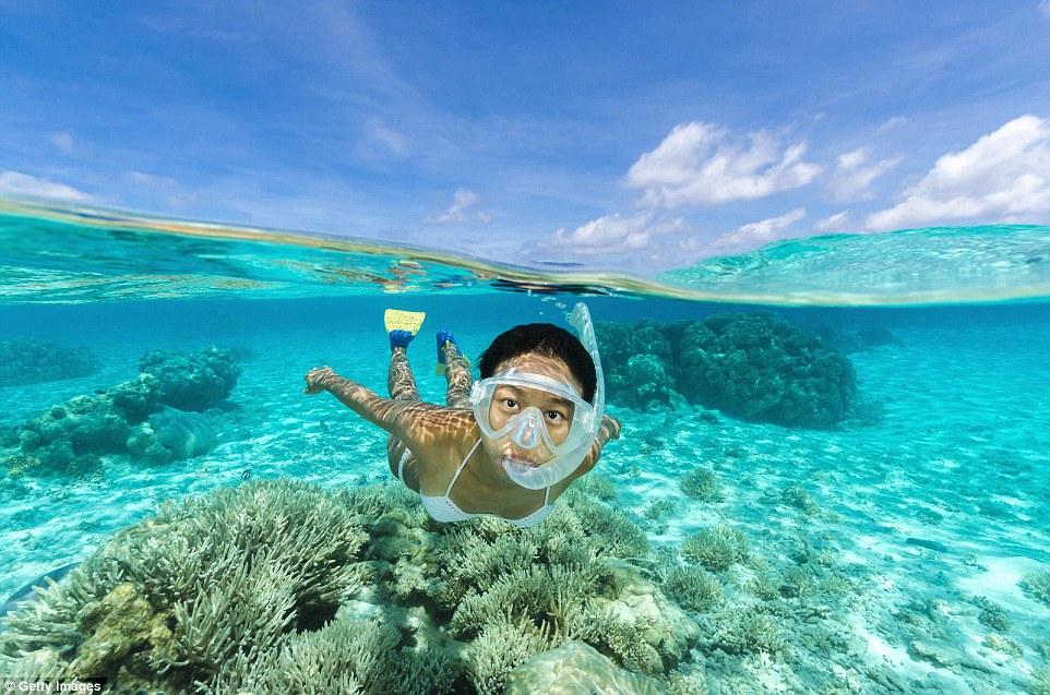 Остров Кокос у берегов Коста-Рики — самый крупный из необитаемых островов в Тихом океане. Здесь очен