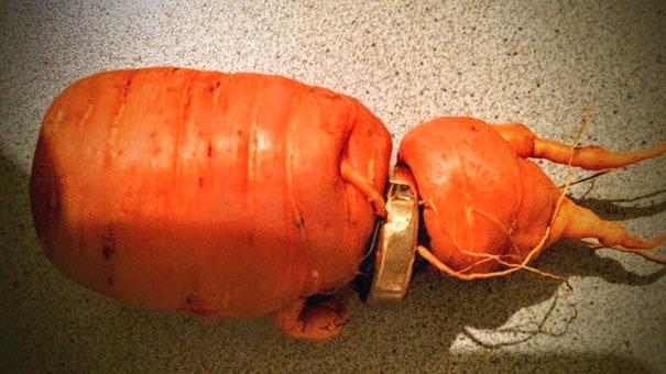 Мужчина нашел потерянное три года назад обручальное кольцо на моркови