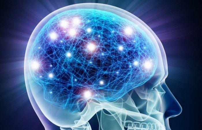 Ученые из калифорнийского Института Солка в Ла-Холья посвятили ушедший год исследованиям человеческо