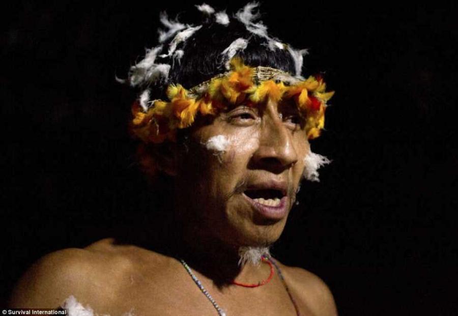 13. Правительство Бразилии объявило, что все «захватчики» были изгнаны из земель Ава в прошлом году,