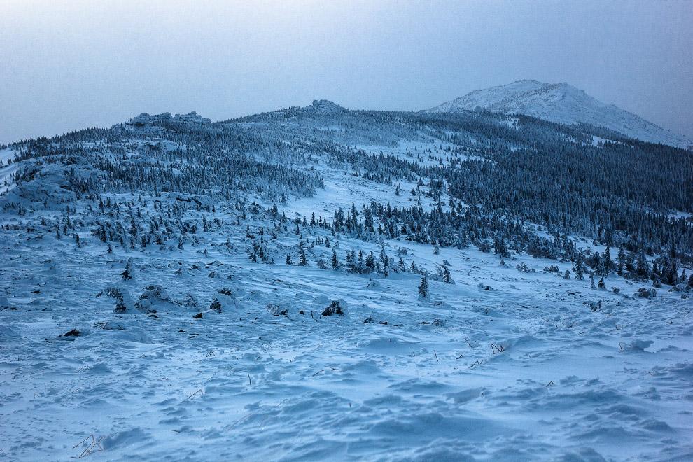 07.01.2016. Это был наш последний ходовой походный день. Грустно было прощаться с лыжней и блес
