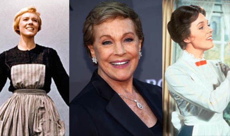 Джули Эндрюс Британская актриса, певица и писательница. Карьеру начинала с Бродвея, где ее провозгла