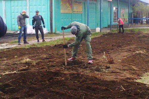 сажали деревья в Куйбышеве