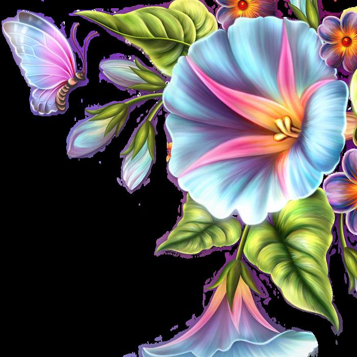 Именинником для, открытки день рождения цветы и бабочки