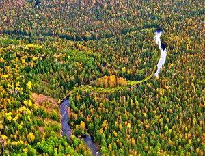 Образ таёжных рек