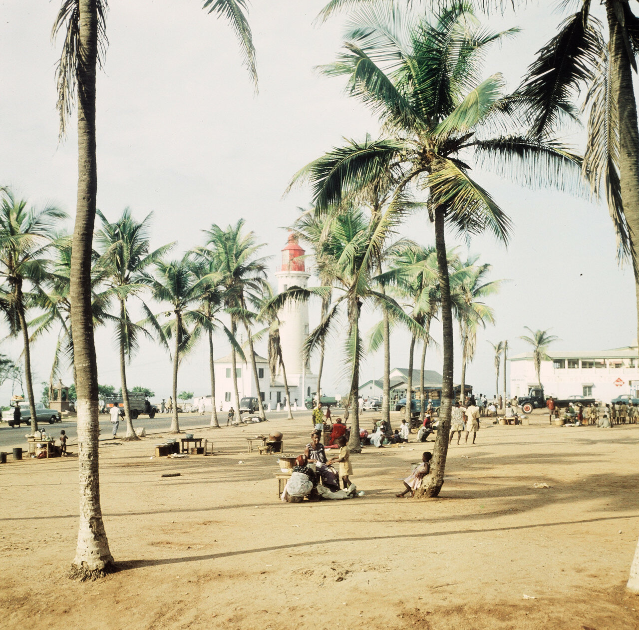 Пальмовник рядом с берегом, 29 марта