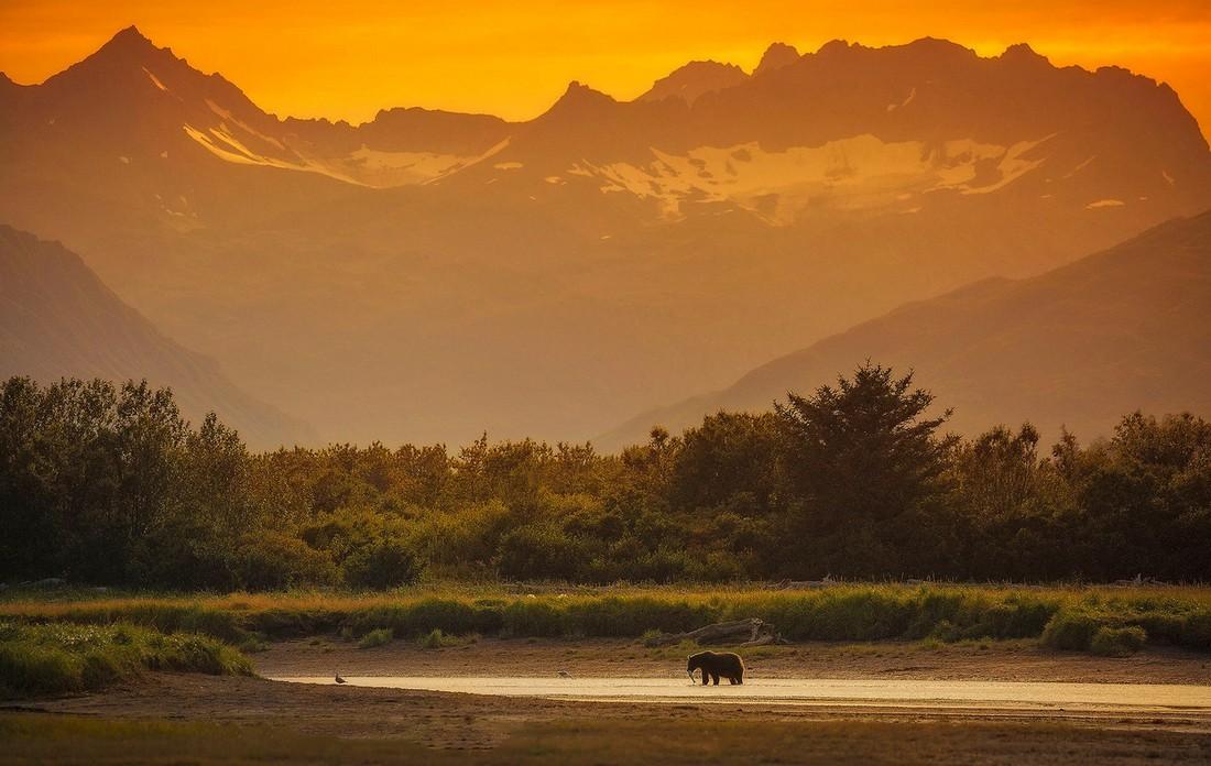 Заповедник «Катмай» на Аляске