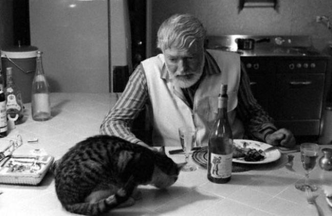 Эрнест Хемингуэй делит свой обед с кошкой.