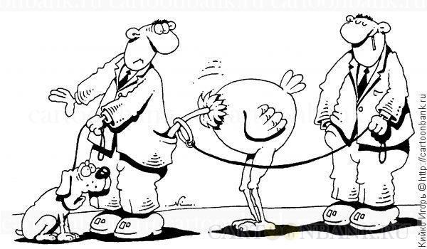 Карикатуры Игоря Кийко