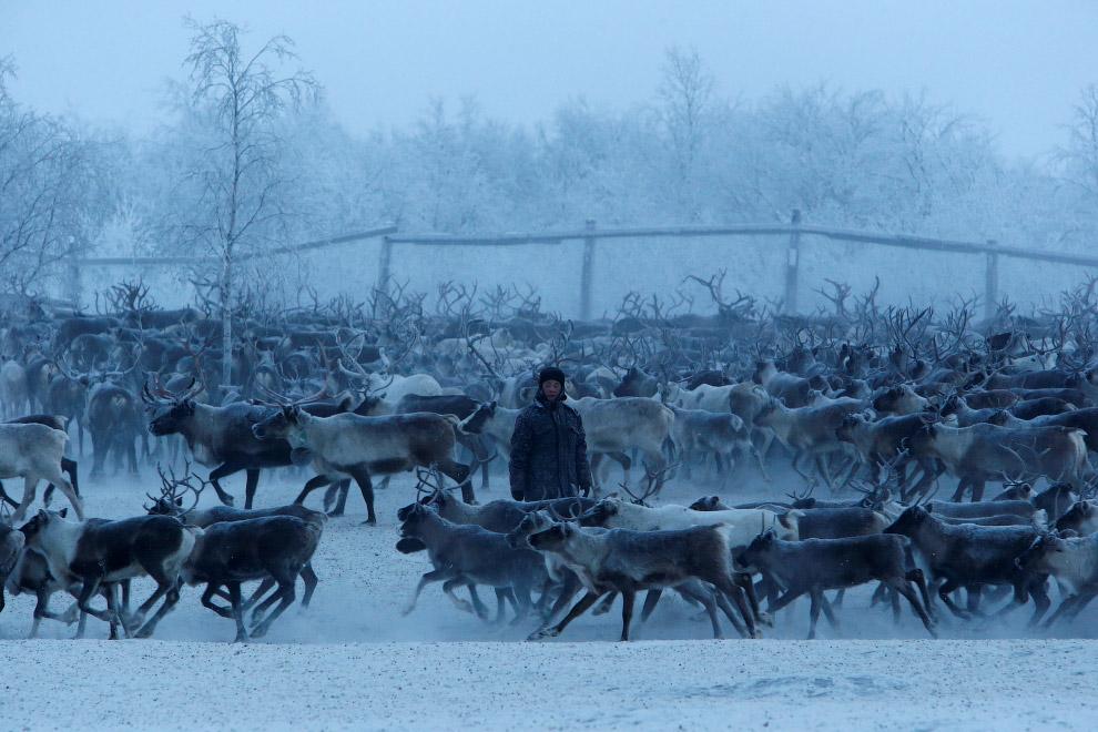 5. (Фото Sergei Karpukhin | Reuters):