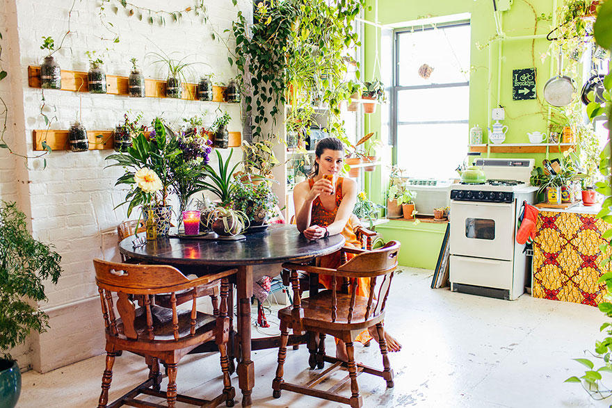 500 растений в квартире (17 фото)