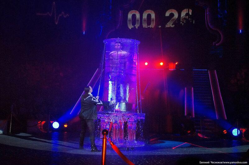 Цирк Никулина. Магия цирка. 21.02.17.73. Сокол..jpg