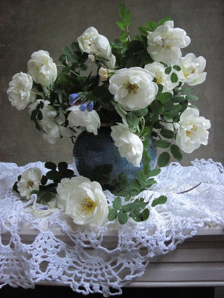 Вечерний этюд с белыми розами