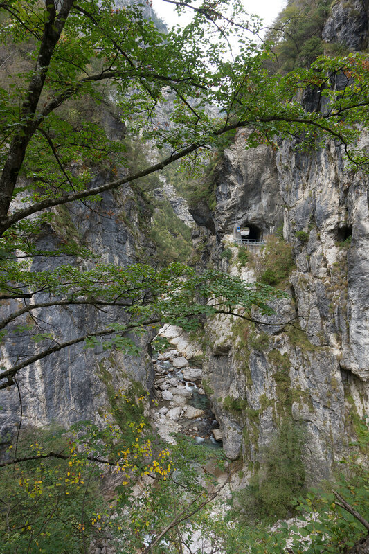 дорога sp2 в парке dolomiti bellunesi и ущелье мис (canal del mis)