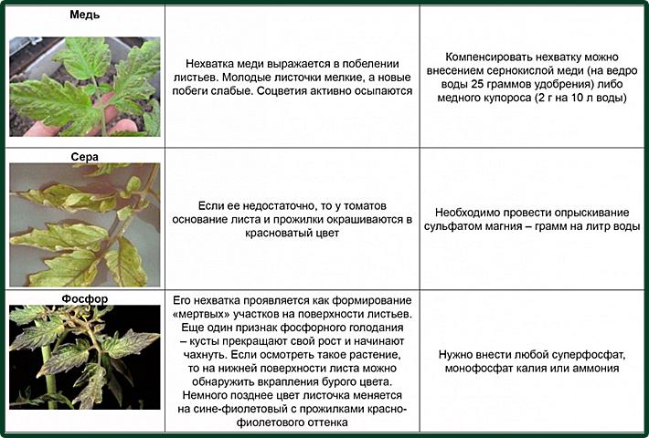 https://img-fotki.yandex.ru/get/125649/86749096.103/0_d2739_3aa6decf_orig.jpg