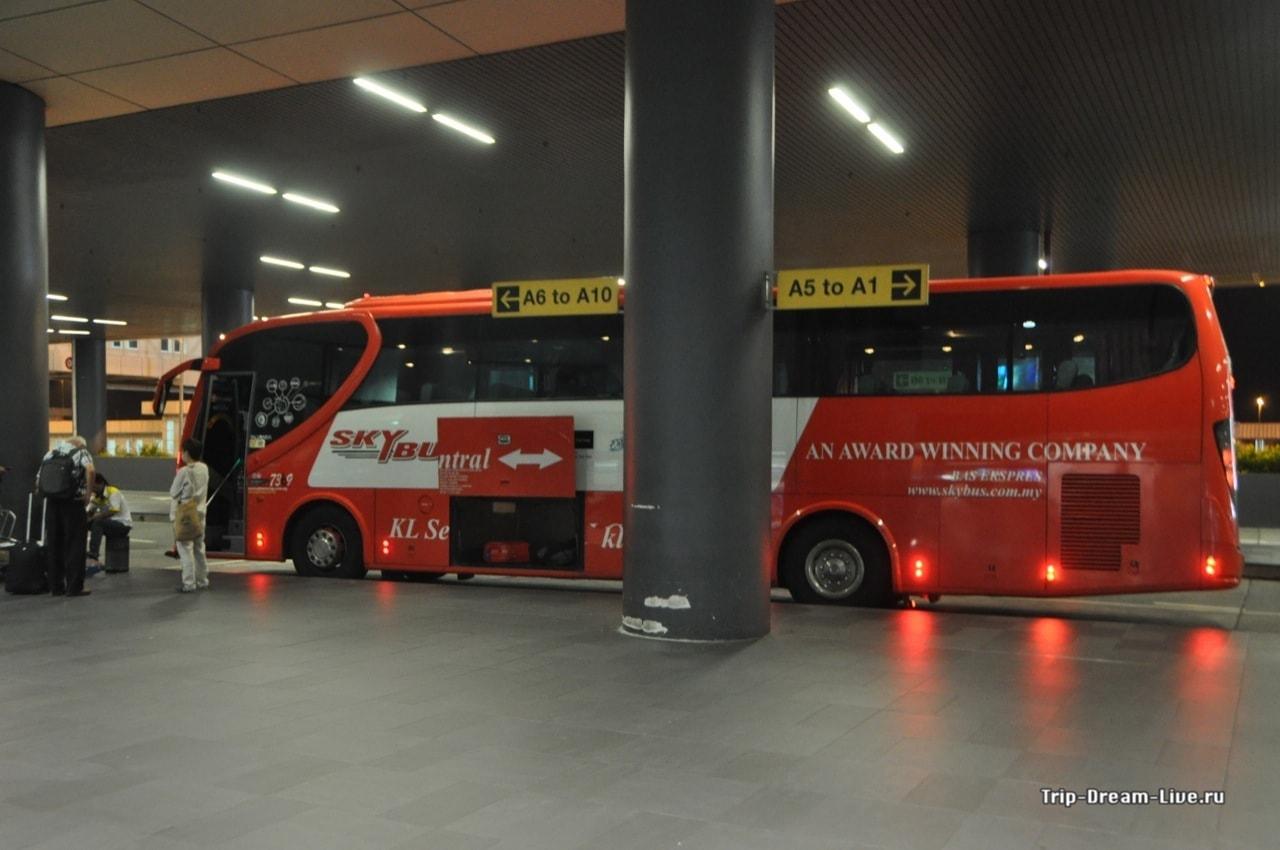 Наш автобус до города