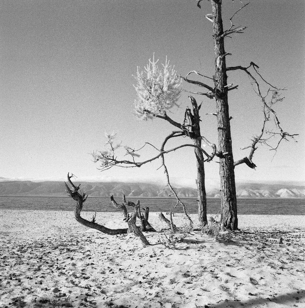 Байкальский пейзаж