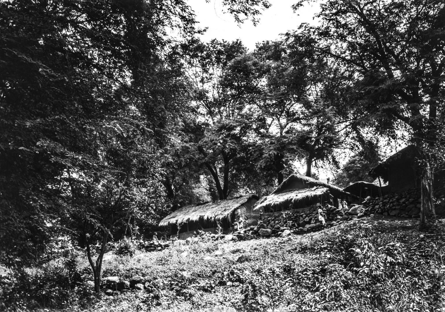 706. Орисса.Вид хижин в лесу