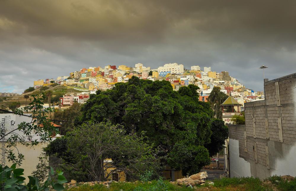 Las-Palmas-(8).jpg