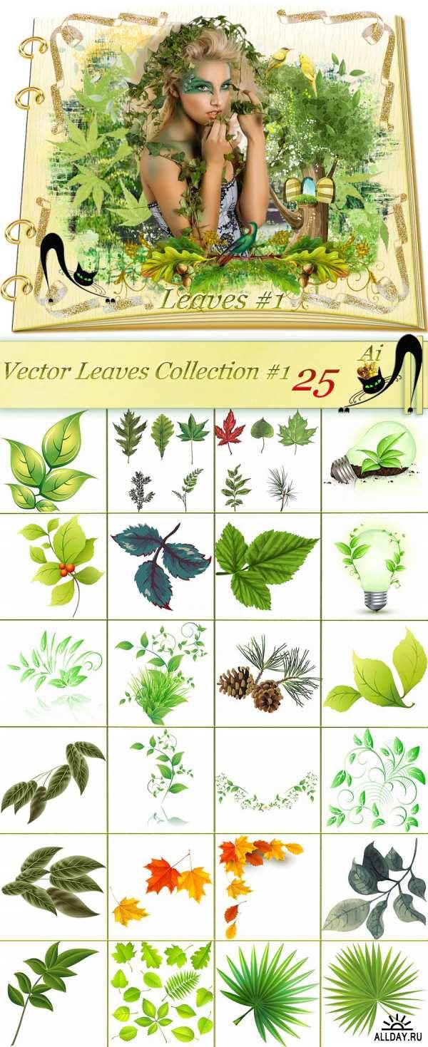 Листья - Векторный клипарт