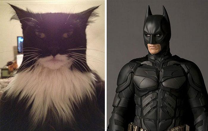Бэтмен.