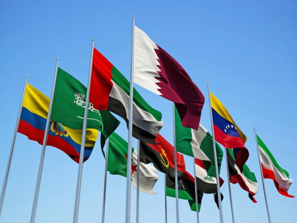 Встреча нефтедобывающих стран вАлжире переносится