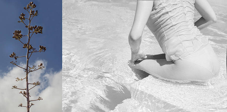 Poolside Dreaming by Emma Hartvig