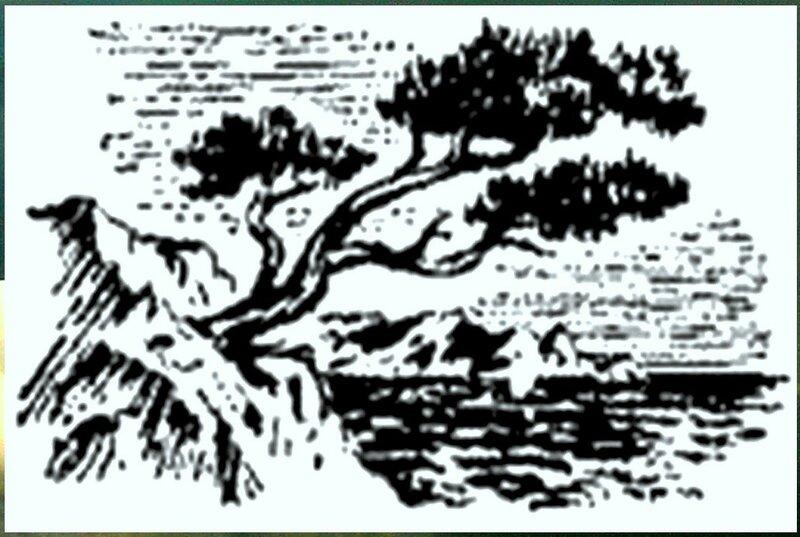 Иллюстрация к книге В.К.Арсеньева Дерсу Узала (20).jpg