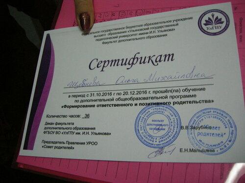 Сертификат - к ст Ярмарка соц проектов2.JPG